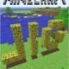 tobin_minecraft_title1_thumb.jpg