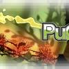 logo-puddle_thumb.jpg