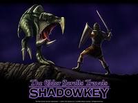 Shadowkey, 581KB