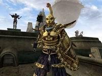 The Elder Scrolls, скриншот, 89KB